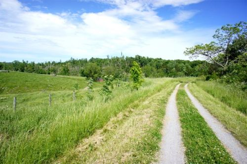 Easy ride along beautiful farmland