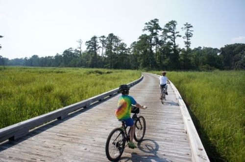 biking around Jamestown Island