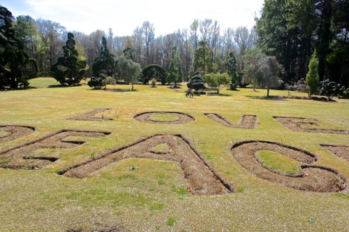 """LOVE, PEACE, and GOODWILL"" on the lawn"